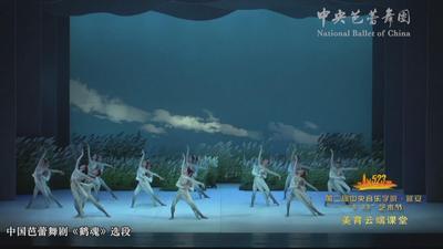 """致敬5·23 • """"盛·放""""——中央芭蕾舞团"""