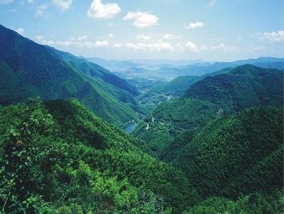 延安市直林业系统学习习近平总书记来陕考察重要讲话重要指示精神