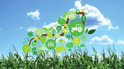 吴起县长城镇:推动产业提档升级 促进农民增收致富